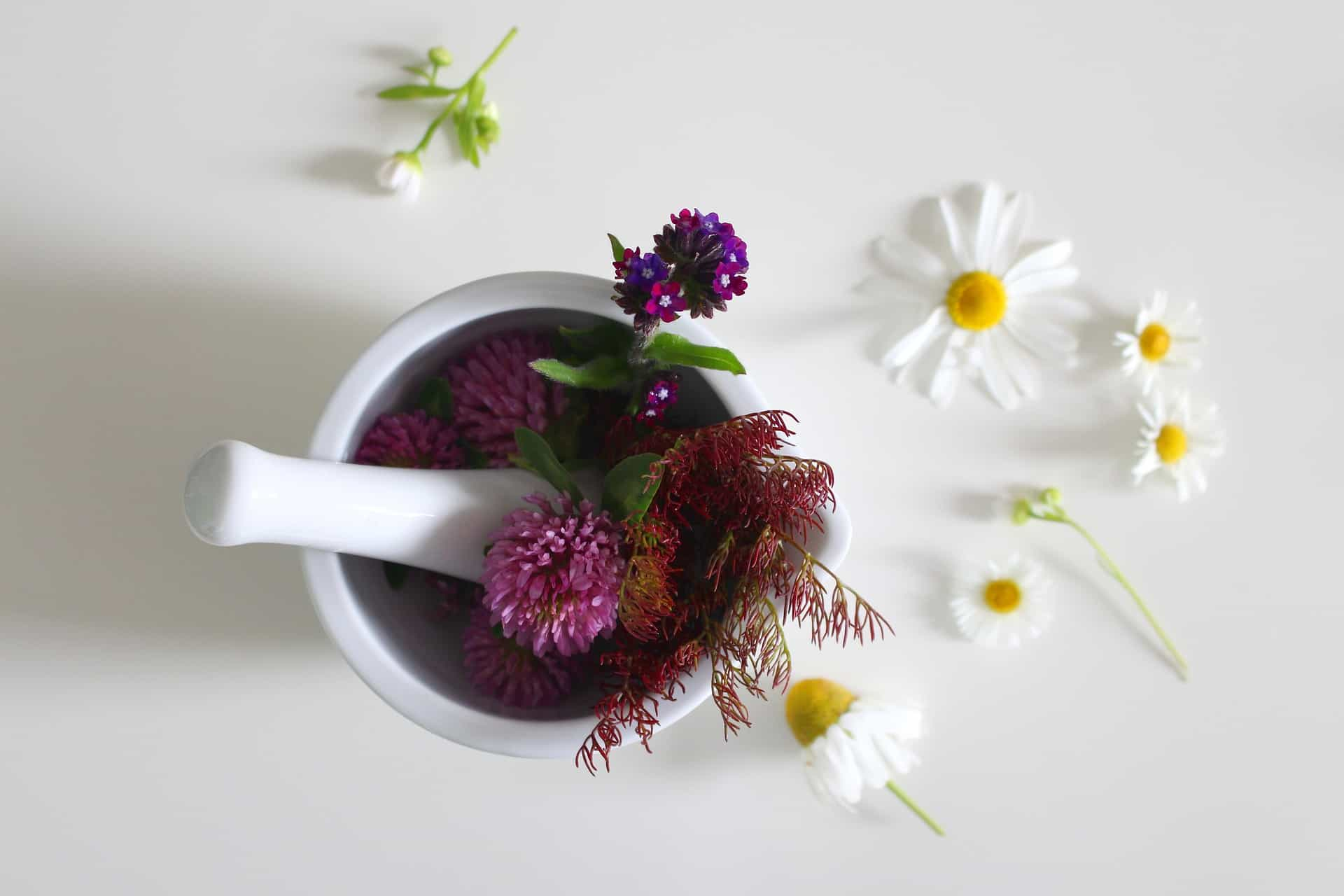 The Safety Of Natural Remedies: From Prejudice To Evidence